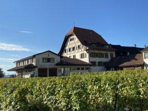 Was Persönlichkeiten aus Twann-Tüscherz über das Engel Haus denken
